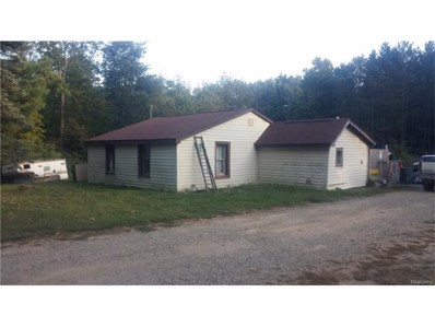 4120 Hunters Creek Road, Attica Twp, MI 48455 - MLS#: 217089581
