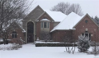 63113 Indian Hills Drive, Washington Twp, MI 48095 - MLS#: 217109427