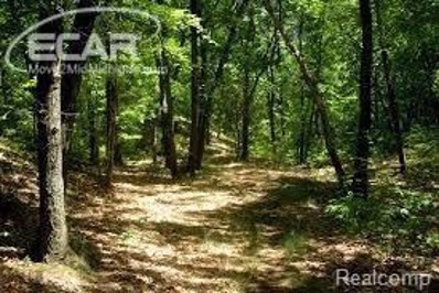 Lakeview Dr., Argentine Twp, MI 48451 - MLS#: 218015353