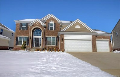 58698 Swing Beam Court, Lyon Twp, MI 48178 - MLS#: 218017648