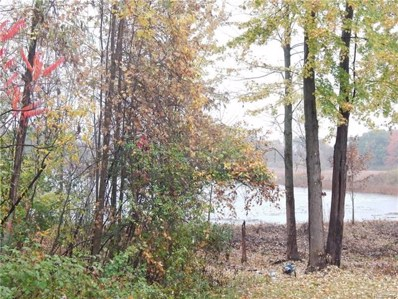Riviera Shores Drive, Holly Twp, MI 48442 - MLS#: 218018724