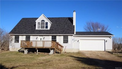 4622 N Lake Road, Marathon Twp, MI 48421 - MLS#: 218023135