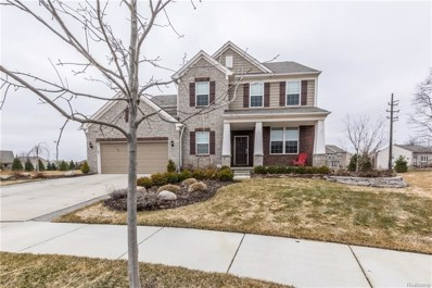 24814 Winnowing Court, Lyon Twp, MI 48178 - MLS#: 218025837