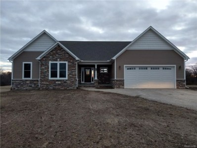 11173 Smiths Creek Road, Riley Twp, MI 48041 - MLS#: 218027414