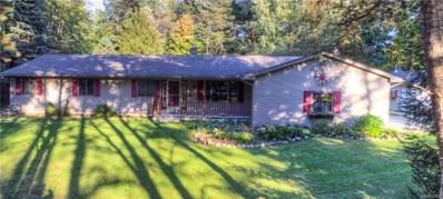3517 Pine Creek Road, Hadley Twp, MI 48455 - MLS#: 218028153