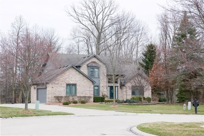 20660 Naves Drive, Clinton Twp, MI 48038 - MLS#: 218029319