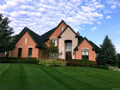 23772 Point O Woods Court, Lyon Twp, MI 48178 - MLS#: 218029938