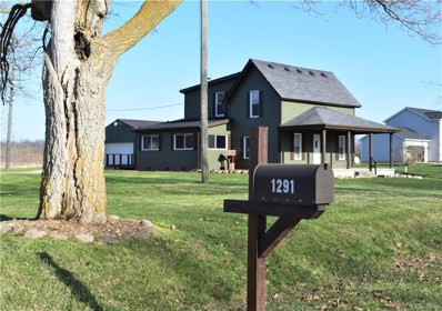 1291 S Washburn Road, Elba Twp, MI 48423 - MLS#: 218038112