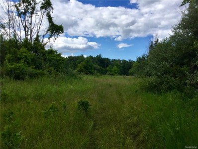 Snover Road, Forester Twp, MI 48419 - MLS#: 218066943