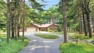 12738 Green Tree Trail, Green Oak Twp, MI 48178 - MLS#: 218068914