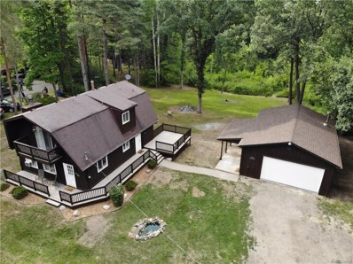 4131 Center Road, Deerfield Twp, MI 48451 - MLS#: 218072988