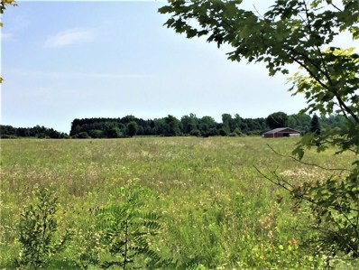 Gibbons Road, Grant Twp, MI 48032 - MLS#: 218077468