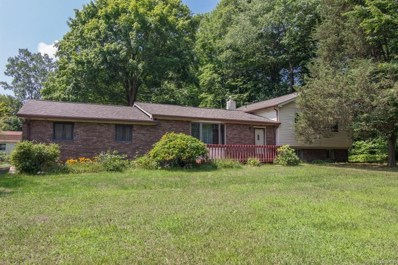 6135 Clintonville, Independence twp, MI 48348 - MLS#: 218079167
