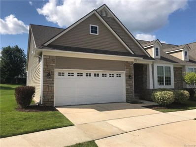 57412 Elk Run W, Lyon Twp, MI 48165 - MLS#: 218082266