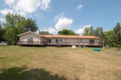 9482 Stelzer Road, Cohoctah Twp, MI 48855 - MLS#: 218083524