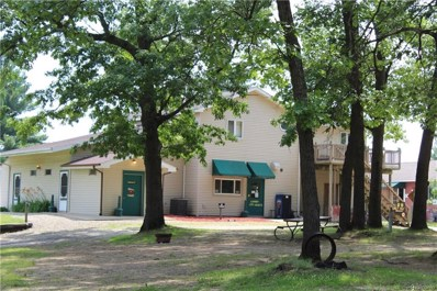 16230 Us Highway 12, Cement City Vlg, MI 49233 - MLS#: 218089762