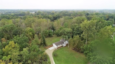 9218 Forestlawn Drive, Hamburg Twp, MI 48169 - MLS#: 218095852