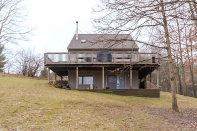 8649 Pettysville Road, Hamburg Twp, MI 48169 - MLS#: 218116638