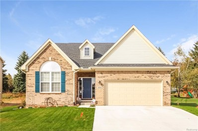 239 Crystal Wood Circle, Marion Twp, MI 48843 - #: 219002054