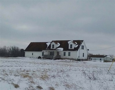 3065 W Sutton Road, Hadley Twp, MI 48446 - MLS#: 219022539