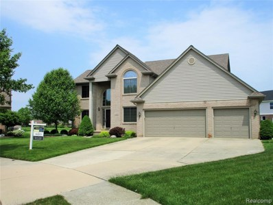 41235 Woodview Court, Clinton Twp, MI 48038 - MLS#: 219023484