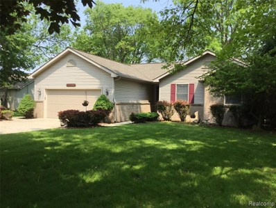 14455 Ripley Road, Linden, MI 48451 - MLS#: 219035314
