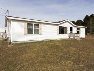 12300 Lake, Montrose, MI 48457 - MLS#: 50100001180