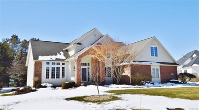 9464 Creek Bend, Davison Twp, MI 48423 - MLS#: 50100001442