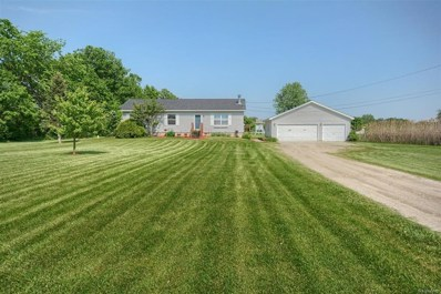 5250 N Webster, Mt. Morris Twp, MI 48504 - MLS#: 50100002462