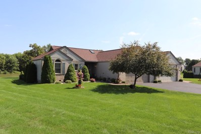 9347 Hillside, Richfield Twp, MI 48423 - MLS#: 50100003897