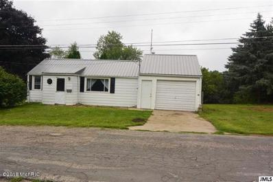 320 W Main St, Adams Twp, MI 49262 - MLS#: 53018046799