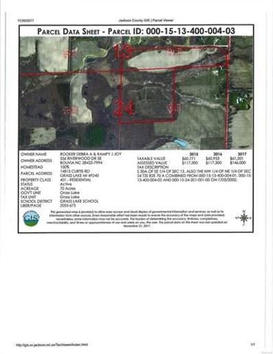 14815 Curtis Road, Grass Lake Twp, MI 49240 - MLS#: 543253583
