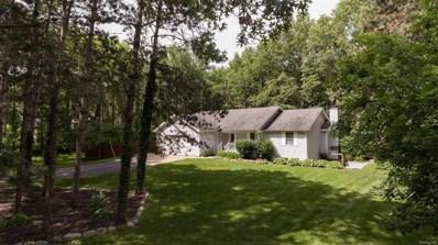 300 Hermitage Farm Ln, Stockbridge, MI 49285 - MLS#: 543258018