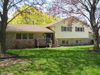 5100 Springbrook Road, Liberty Twp, MI 49201 - MLS#: 543259470