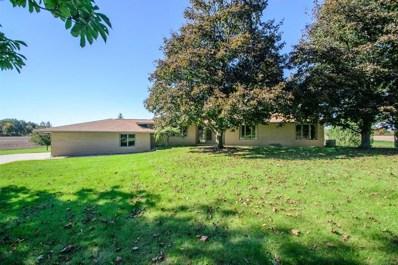 6320 Carpenter Road, Pittsfield Twp, MI 48197 - MLS#: 543259786