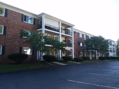 806 W Michigan Avenue UNIT 307W, Jackson, MI 49202 - MLS#: 543263955
