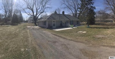 411 Marshall St, Village Of Brooklyn, MI 49230 - MLS#: 55201801210
