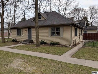 103 Michigan St, Village Of Brooklyn, MI 49230 - MLS#: 55201801250