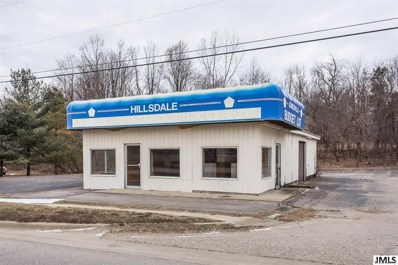 503 E Chicago Rd, Jonesville, MI 49250 - MLS#: 55201801543