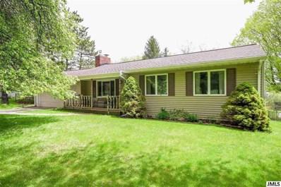 236 Lake Hills Dr, Concord, MI 49237 - MLS#: 55201801664