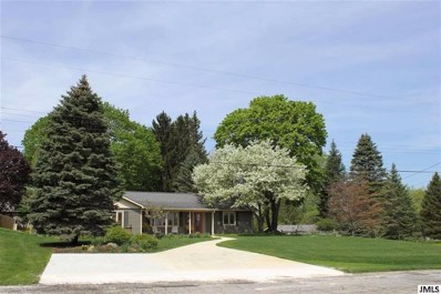 1286 Levant, Summit, MI 49203 - MLS#: 55201801810