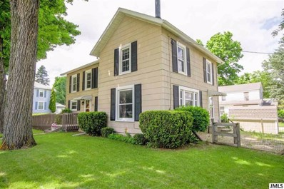 204 Chicago St, Village Of Brooklyn, MI 49230 - MLS#: 55201801925