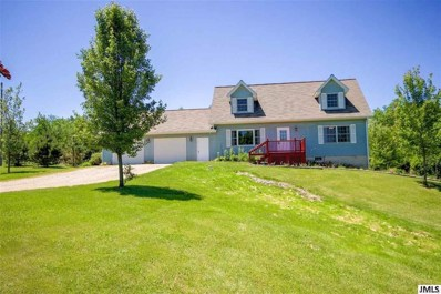 9686 Mapledale, Liberty, MI 49246 - MLS#: 55201801982