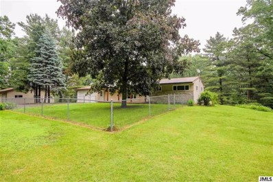 10501 Moscow Rd, Hanover, MI 49241 - MLS#: 55201802220