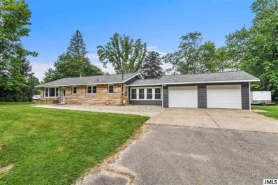 916 20TH St, Summit, MI 49203 - MLS#: 55201802415