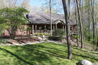 4884 Mill Run, Summit, MI 49201 - MLS#: 55201900177