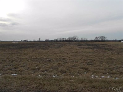 Thompson Hwy, Blissfield Twp, MI 49228 - MLS#: 56031339231