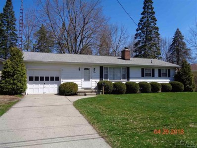 684 High St, Adrian, MI 49221 - MLS#: 56031346136