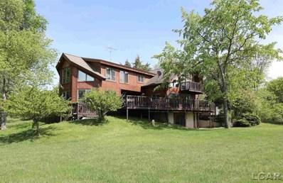 10100 Round Lake Highway, Woodstock Twp, MI 49220 - MLS#: 56031348454