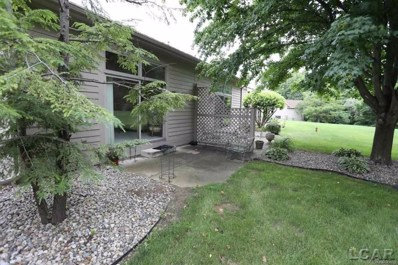 230 Richlyn, Adrian Twp, MI 49221 - MLS#: 56031351808
